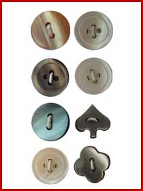 Shell Imitation Buttons